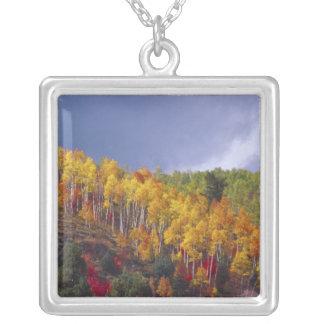 Collier Canyon de Logan en Utah en automne avec le