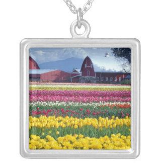 Collier Champ d'affichage de tulipe
