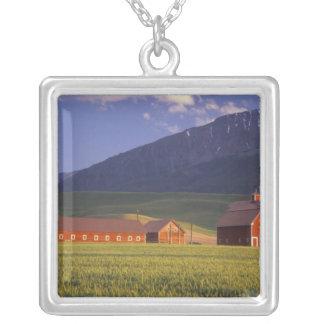 Collier Champ de blé dans la vallée de Wallowa, juste
