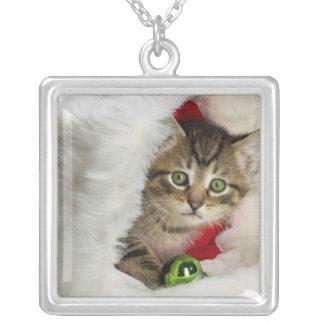 Collier Chat de Noël - chat de chaton - chats mignons