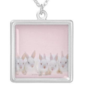 Collier Cinq lapins 2