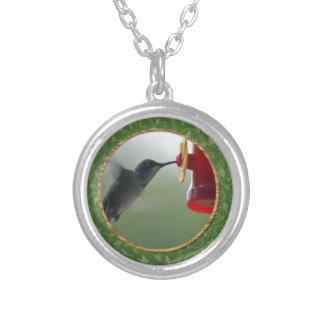 Collier Colibri au conducteur dans le rond, oiseaux sur