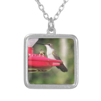Collier Colibri Throated rouge