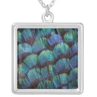 Collier Conception bleu-vert de plume de faisan