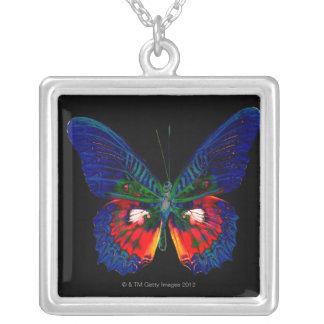 Collier Conception colorée de papillon contre le contexte