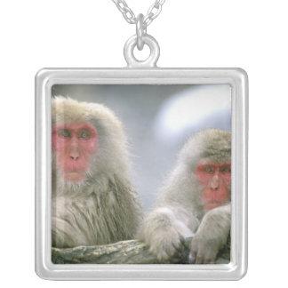 Collier Couples de singe de neige, Macaque japonais,