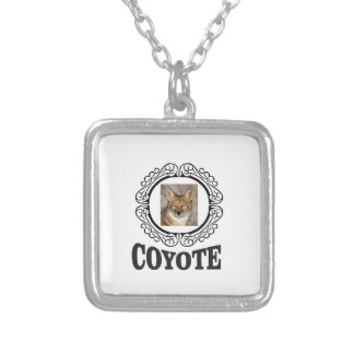 Collier coyote rond