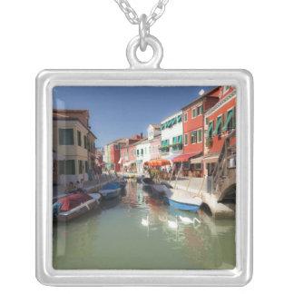 Collier Cygnes dans le canal, île de Burano, Venise,