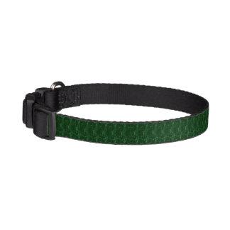 Collier de chien - beau vert