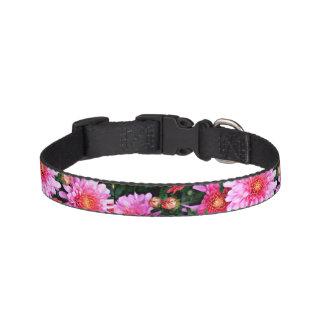 Collier de chien floral rose