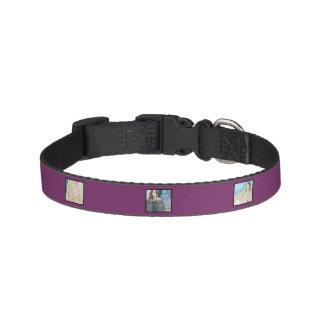 Collier de chien personnalisé par violette
