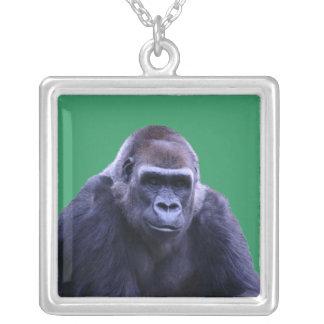 collier de gorille