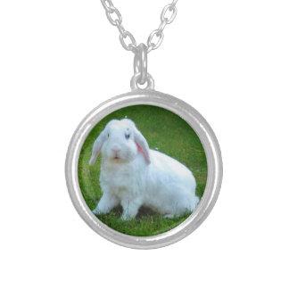 collier de lapin
