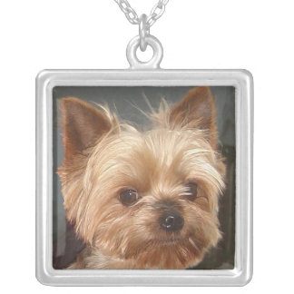 Collier de portrait de Yorkshire Terrier
