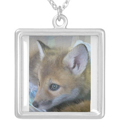 collier de renard de bébé
