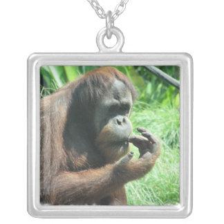 Collier de singe d'orang-outan
