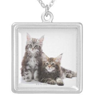 Collier Deux chatons de chat de ragondin du Maine