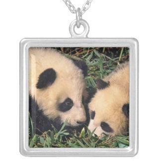 Collier Deux petits animaux de panda dans le buisson en