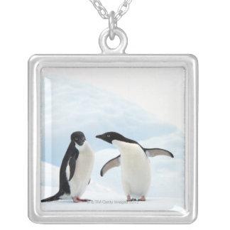 Collier Deux pingouins d'Adelie se reposant sur une