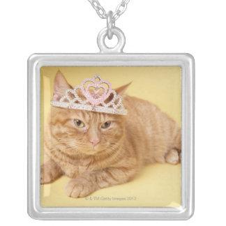Collier Diadème de port de chat