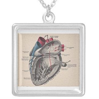 Collier Diagramme humain antique d'anatomie de coeur