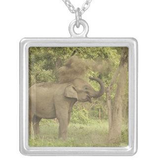 Collier Éléphant indien/asiatique prenant le bain de la
