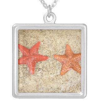Collier étoiles de mer sur la plage, au bord de l'océan