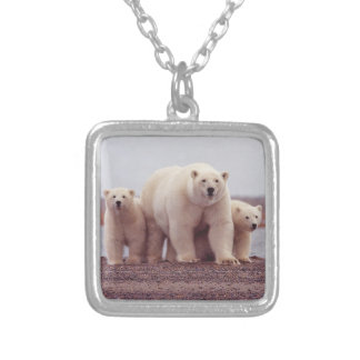 Collier Famille d'ours blanc