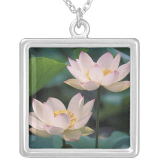 Collier Fleur de Lotus dans la fleur, Chine