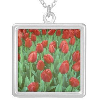 Collier Fleurs de champ de tulipe pendant le ressort