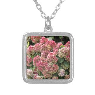 Collier Fleurs d'un hortensia de Français (macrophyl