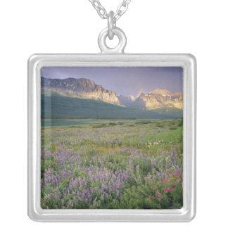 Collier Fleurs sauvages de prairie le long de lac