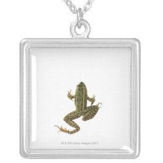 Collier Grenouille 2