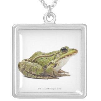 Collier Grenouille européenne commune ou grenouille