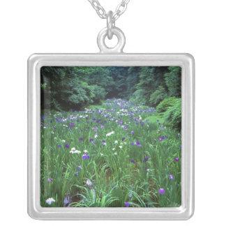 Collier Hana Shobu (iris japonais de l'eau), tombeau de