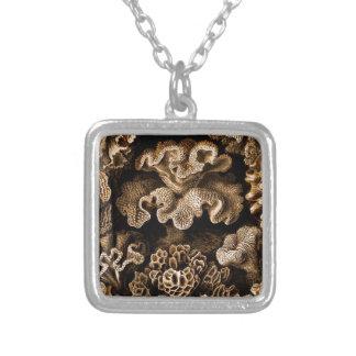 Collier Hexacoralla de corail dans les bruns
