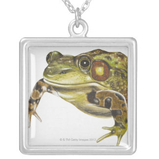 Collier Illustration de Digitals de grenouille verte