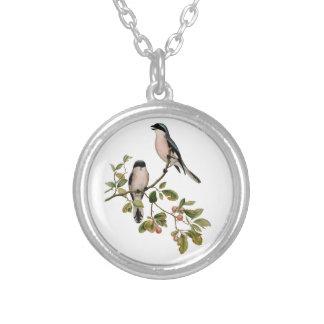 Collier Jolis oiseaux vintages sur une branche