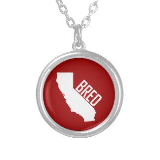 Collier La Californie a multiplié