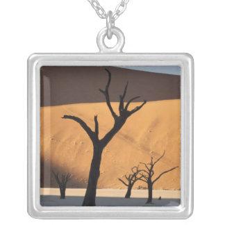 Collier La Namibie, désert de Namib, Sossusvlei,