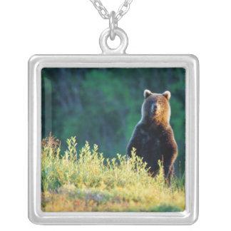 Collier La Russie, le Kamtchatka, ours gris de Kroska