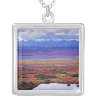 Collier La toundra du parc national de Denali vers la fin