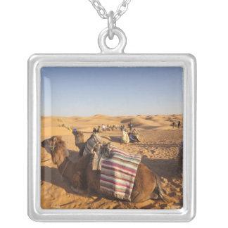Collier La Tunisie, région de Ksour, Ksar Ghilane, erg
