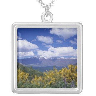 Collier Lac Wakatipu et le Remarkables, Queenstown,