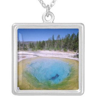 Collier L'Amérique du Nord, Etats-Unis, Wyoming,