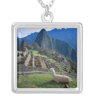 Collier L'Amérique du Sud, Pérou. Un lama se repose sur