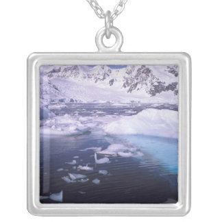 Collier L'Antarctique. Expédition par des icescapes