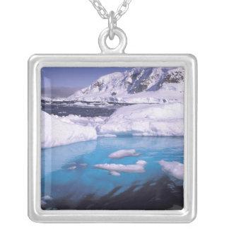 Collier L'Antarctique. Expédition par les icescapes 2