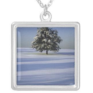 Collier L'arbre dans la neige a couvert le paysage