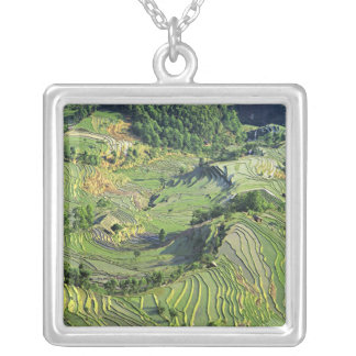 Collier L'Asie, Chine, Yunnan, Yuanyang. Motif de vert